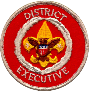 District Executive